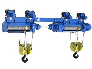 Double hook electric hoist